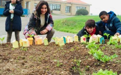 Cultivando la semilla de la solidaridad